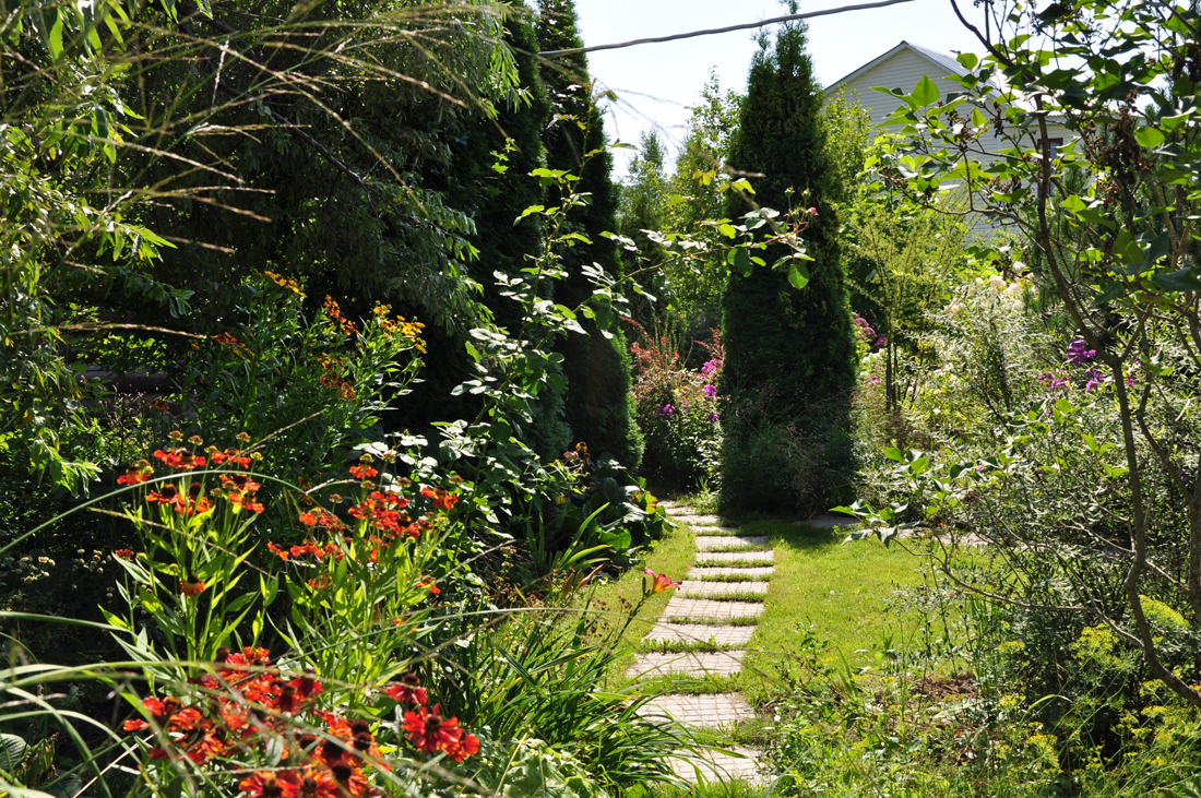 Мой сад , b.km, 2013 год